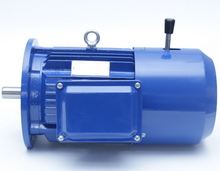 YD Series Pole-Changing Multi-Speed Three-Phase Asynchronous Electric Motor